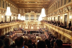 Charity concert at Musikverein in Vienna, November 3